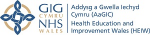 Health Education and Improvement Wales (HEIW)